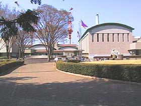 美術館 世田谷 タヌキと警備員の攻防 キヌタ公園だけにタヌキ出現?